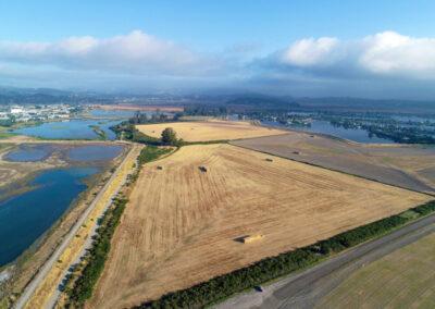 Bel Marin Keys Hamilton Restoration Project